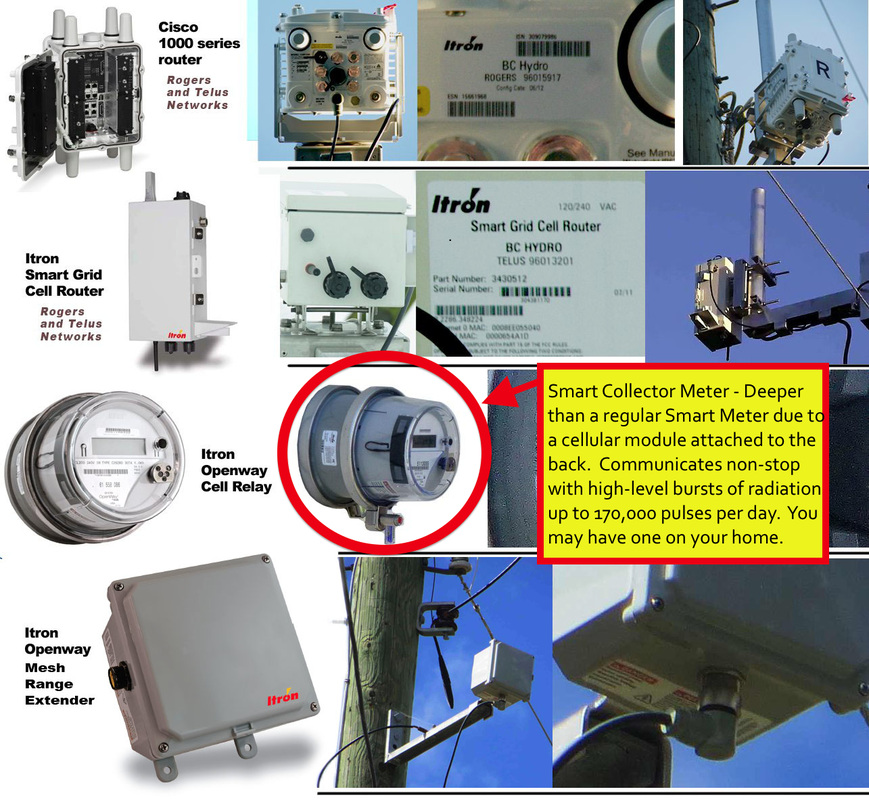 What Is A Smart Meter Stop Oc Smart Meters