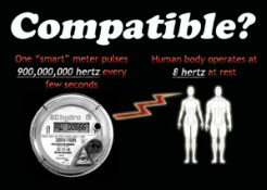 Compatible Smart Meter and Humans?